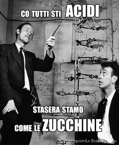 Francis Crick e James Watson