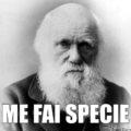 Charles Darwin me fai specie