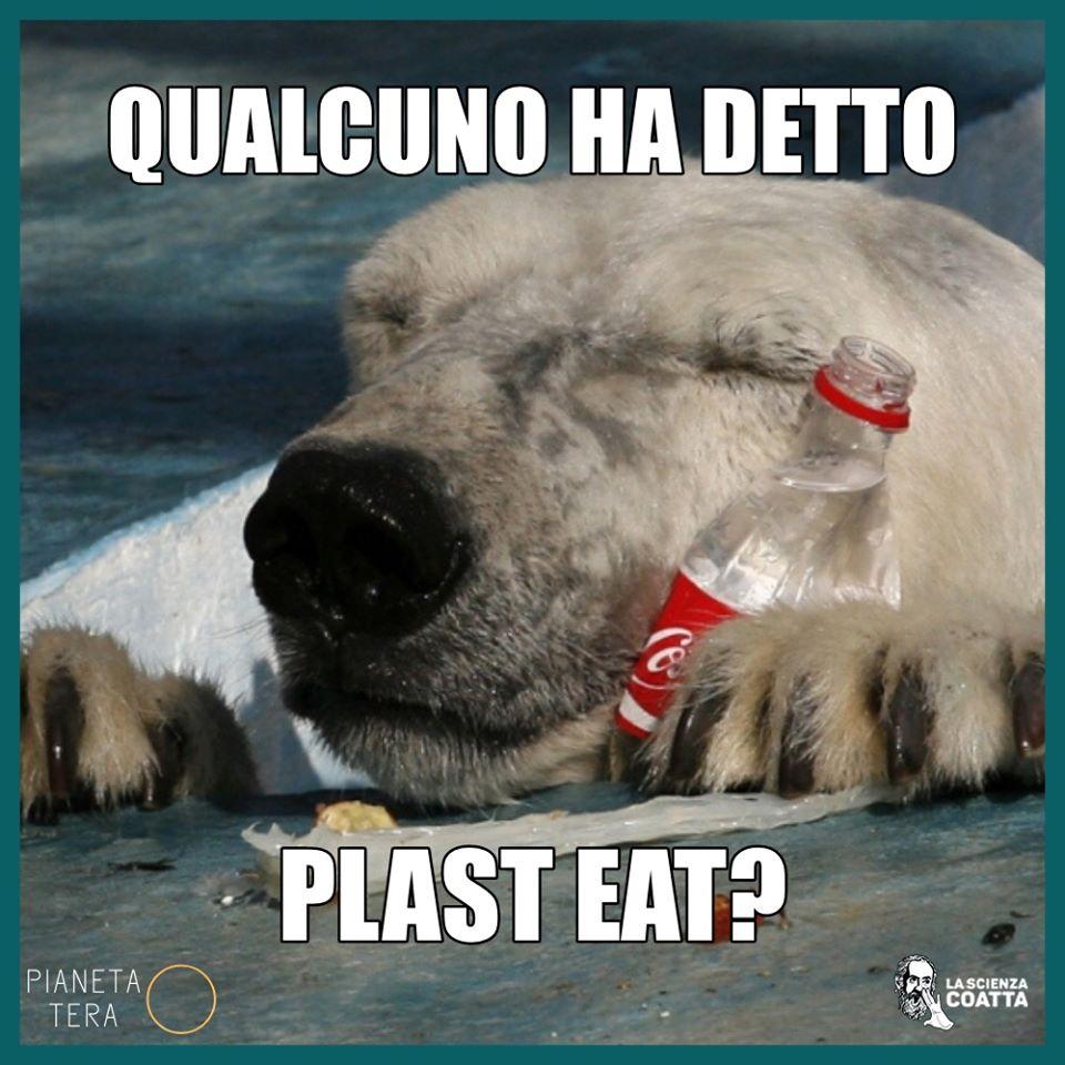 Plast eat